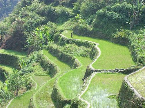 Terrazas De Arroz En Banaue El Baúl De Josete
