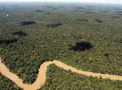 frontera_norte_parque_nacional_yasuni_ecuador_zonas_mayor_biodiversidad_planeta.jpg